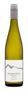 MT 2015 Riesling Bottleshot